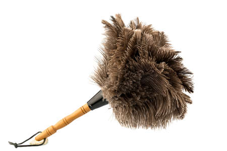 putz: a feather duster against white background, symbol photo for cleanliness and care Stock Photo