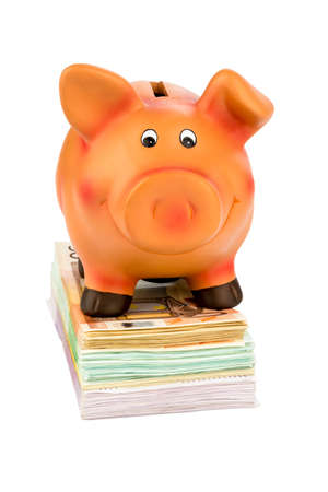 fixed rate: a piggy bank is on banknotes, symbolic for economy, profitability, return on