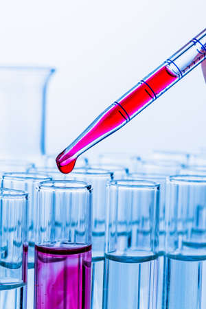 food testing: many test tubes in a test in a research laboratory of a university  symbol and learn for research