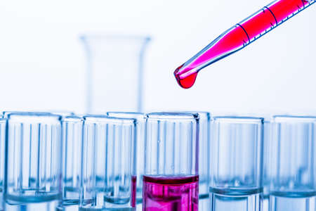 drug test: many test tubes in a test in a research laboratory of a university  symbolic photo for learning and researching