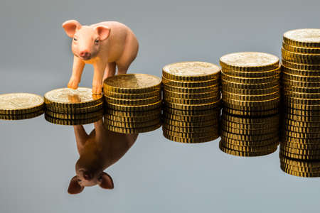 a pig stands on a pile of coins  rising feed costs in agriculture  diminishing returns for pork Stock Photo - 19420284