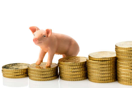 a pig stands on a pile of coins Stock Photo - 20772676