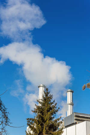 ozone: chimney of an industrial company with tree. symbolic photo for environmental protection and ozone.