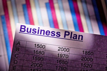 reestablishment: a business plan for starting a business. ideas and strategies for self-employment.