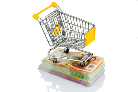 purchasing power: shopping cart is on banknotes, symbolic photo for shopping, purchasing power, money printing and inflation
