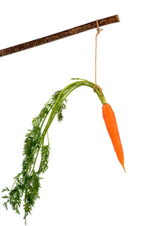 enticement: carrot on a stick. fresh fruit and vegetables are always healthy. symbolic photo for motivation.