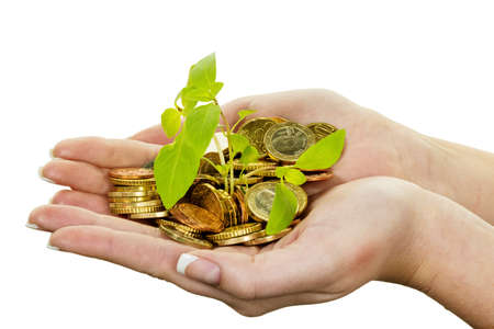 provisions: hands with money and plant. symbol photo surch for growing capital interest in saving.
