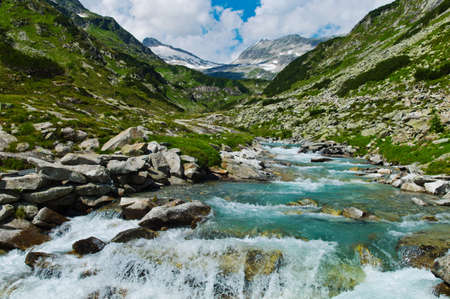 torrential: torrential creek in the mountains, austria