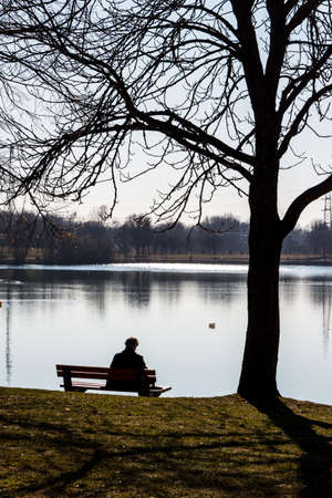 a solitary man sits at a lake on a park bench