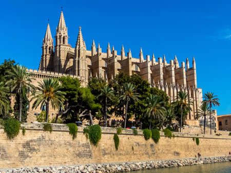 spain, mallorca, palma. the cathedral la seu as touristenatrraktion in the city center. photo