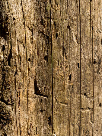 an old wall and wood planks. wooden wall on a hay barn photo