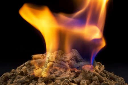 pellzts voor verwarming als alternatieve energiebron. milieuvriendelijke verwarming