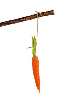 enticement: carrot on a stick