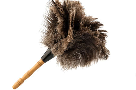 putz: a feather duster against white background