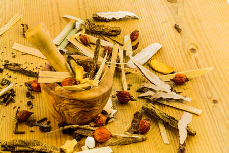 therapie: ingredients for a cup of tea in traditional chinese medicine. cure of diseases by alternative methods. Stock Photo