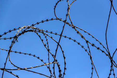 penal: a plot of land is covered with barbed wire