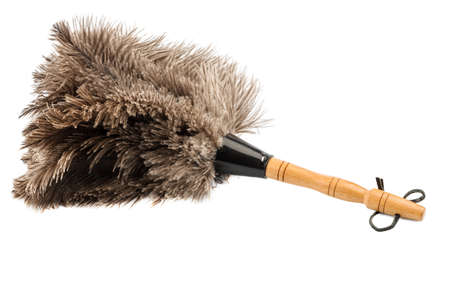 putz: a feather duster against white , symbol photo for cleanliness and care Stock Photo