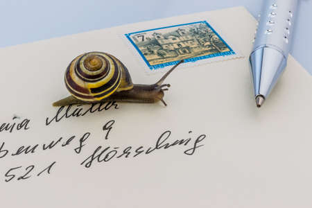 deliverable: a snail on a letter. symbol photo for slow breifzustellung. smail