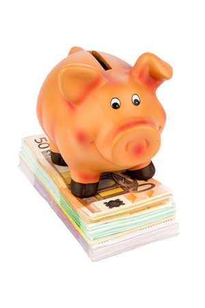 yields: a piggy bank standing on banknotes, symbolic photo for economy, profitability, return on Stock Photo