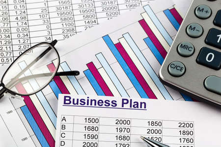 reestablishment: a business plan for starting a business. ideas and strategies for business creation.