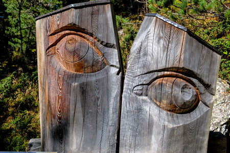 farsighted: carved eye icon to see an ophthalmologist, vision, surveillance