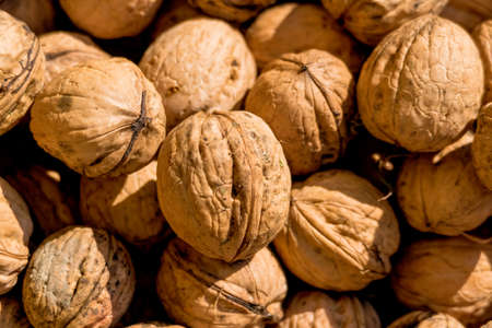 hardness: many walnuts close-up, solve problems icon, abundance, hardness Stock Photo