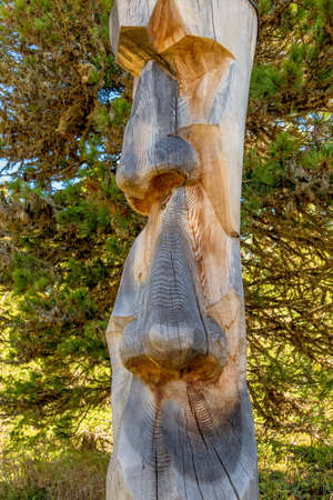 myopic: tree trunk, carved face, symbol of magic, carving, monitoring
