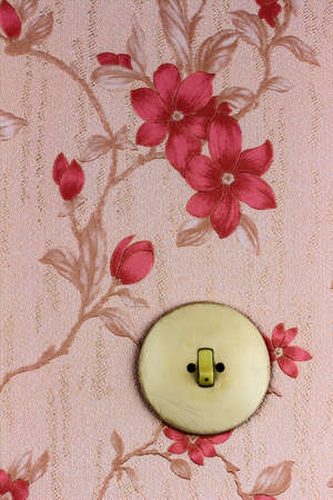 housing prices: an old wallpaper with light switch. symbolic photo for renovation and remodel.