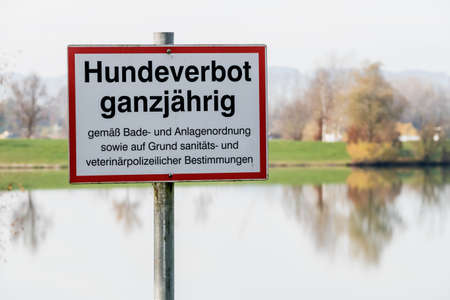 paramedical: sign no dogs allowed all year round, symbol of hygiene, prohibition, ban on swimming
