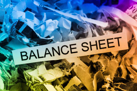 auditors: shredded paper tagged with balance sheet, symbolic photo for data destruction, budgets and accounting