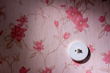 inherit: an old wallpaper with light switch. symbolic photo for renovation and remodel.