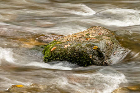 relaxen: a rock with autumn leaves in a stream Stock Photo