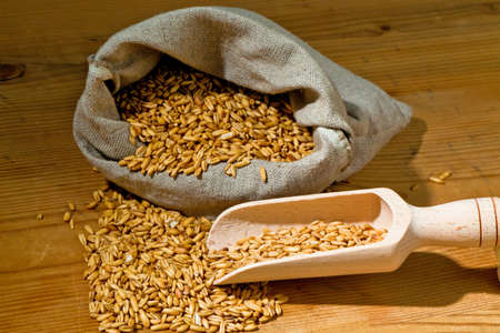peasantry: grains of oats. yields for crops in agriculture