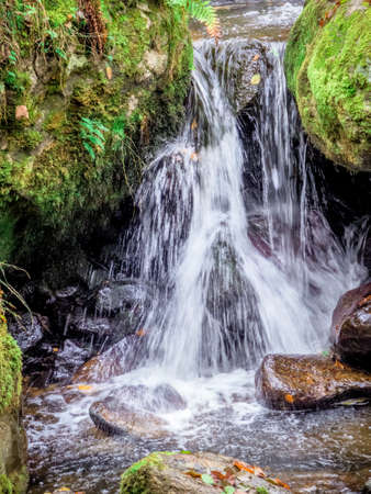 a creek with rocks and flowing water. landscape experience in nature. Stock Photo
