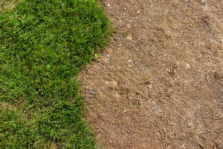 formulations: area was sprayed with a herbicide. lawn renovation Stock Photo