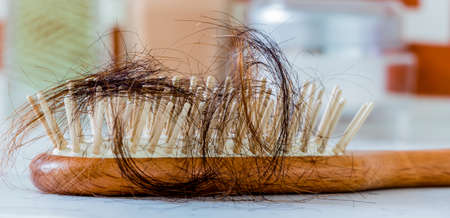 hair tuft: a hair brush with haeren. beginning of hair loss and alopecia Stock Photo