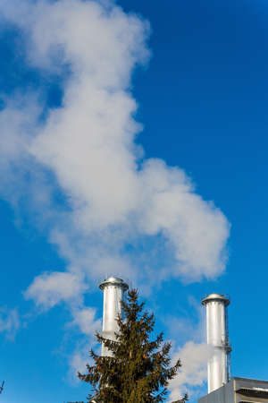 particulate: chimney of an industrial company with tree. symbolic photo for environmental protection and ozone.