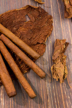adjacent: leaves of tobacco and finished cigars are adjacent. Stock Photo