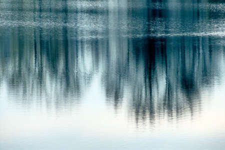 fluent: trees reflecting in the water, symbol of nature and meditation, and awareness and stillness