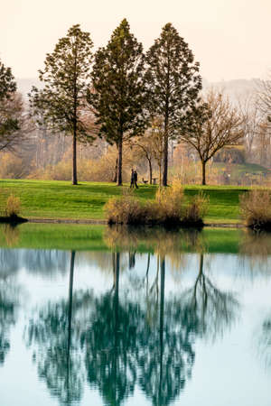 meditative: trees reflecting in the lake, symbol of nature, idyllic, contemplation Stock Photo
