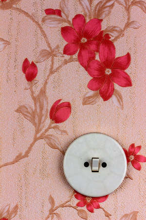 energy needs: an old wallpaper with light switch. symbolic photo for renovation and remodel.
