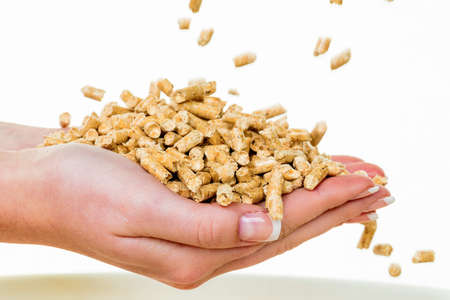pellets: alternative energy for heating. heating with pellets before the environment.