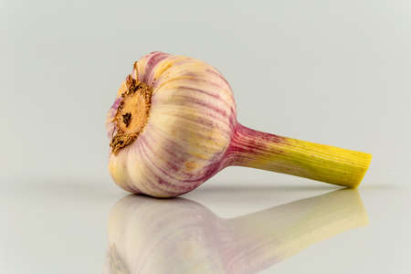 calorie rich food: the inclusion of a garlic bulb in the studio. fruits and vegetables have vitamins Stock Photo