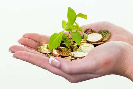 esquema: manos con el dinero y las plantas. surch symbolfoto de creciente interés de capital en el ahorro.