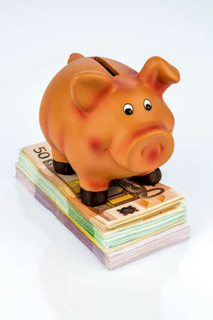 yields: a piggy bank is on banknotes, symbol photo for thrift, profitability, return