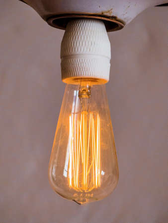 incidence: energy saving lamp, symbol photo for energy conservation, ecology, environmental protection.