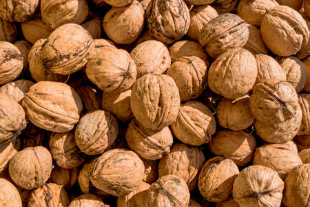 hardness: many walnuts close-up, solve symbol of problems, fullness, hardness