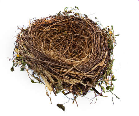 financed: the empty nest of a bird. empty birds nest. symbol image for building savings and construction