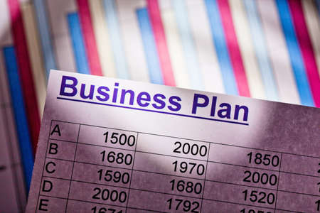 reestablishment: a business plan to start a business. ideas and strategies for self-employment.