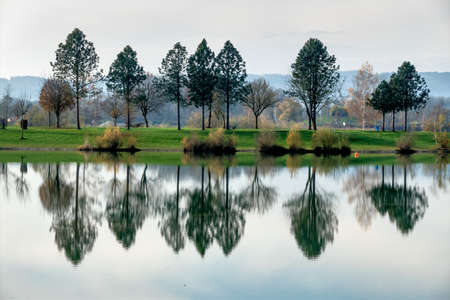 relaxen: trees reflecting in the lake, a symbol of nature, idyll, contemplation